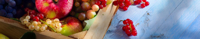 Grossiste en fruits